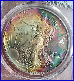 1993 Silver Eagle Pcgs Ms67 Gold Shield/true View! Double Sided Monster Toned