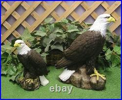 Small American Bald Golden Eagle Latex Fiberglass Production Mold Concrete